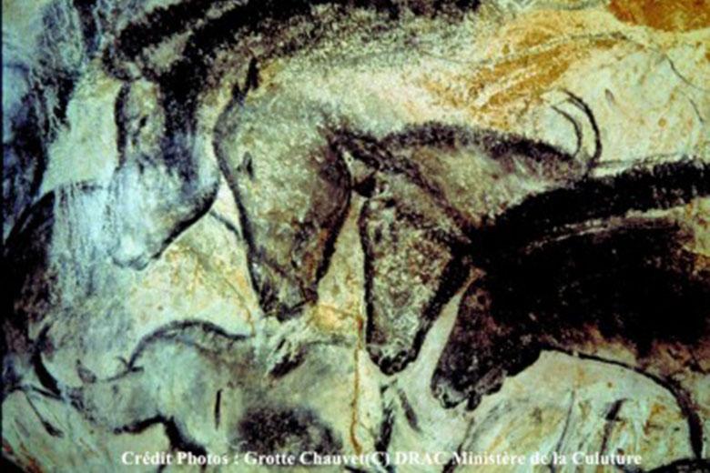 Grotte Chauvet Unesco